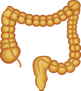colonic-irrigation